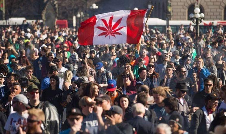 canadá-la-legalización-de-marihuana-generó-un-aumento-del-número-de-consumidores