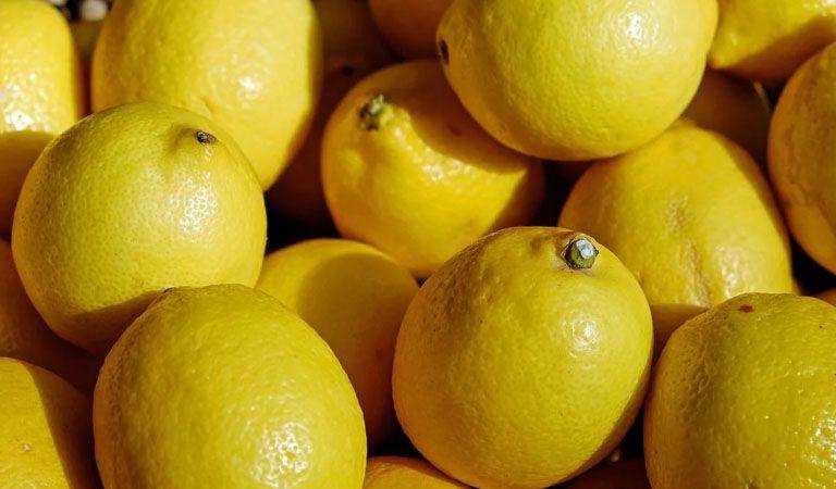 México abre la puerta a los limones argentinos