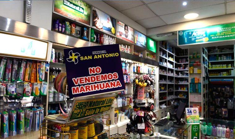 Se suspende distribución de marihuana a farmacias uruguayas hasta mediados de noviembre