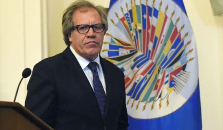 Sube a 44 los presos políticos excarcelados en Venezuela