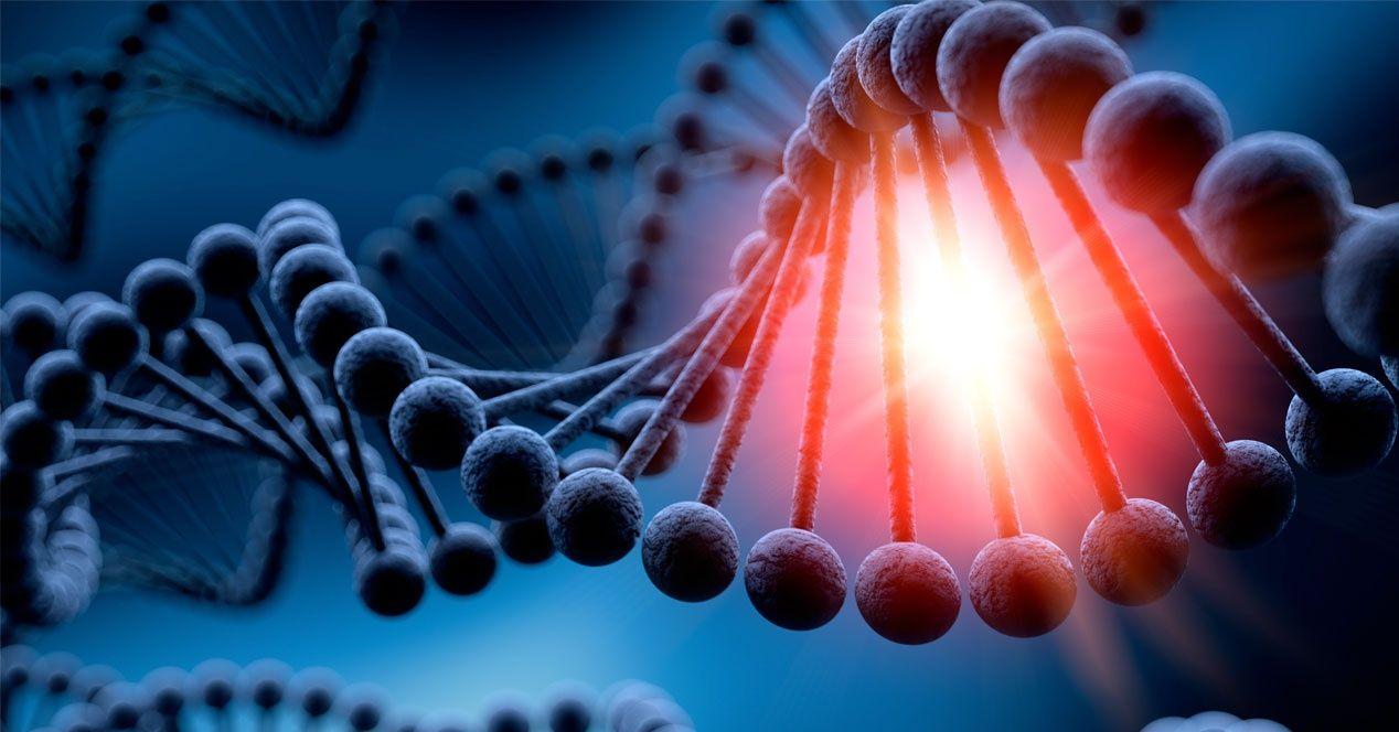 ADN de 20 mil hombres servirá para encontrar a un asesino